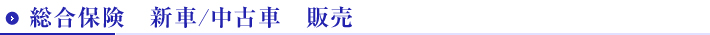 総合保険 新車/中古車 販売